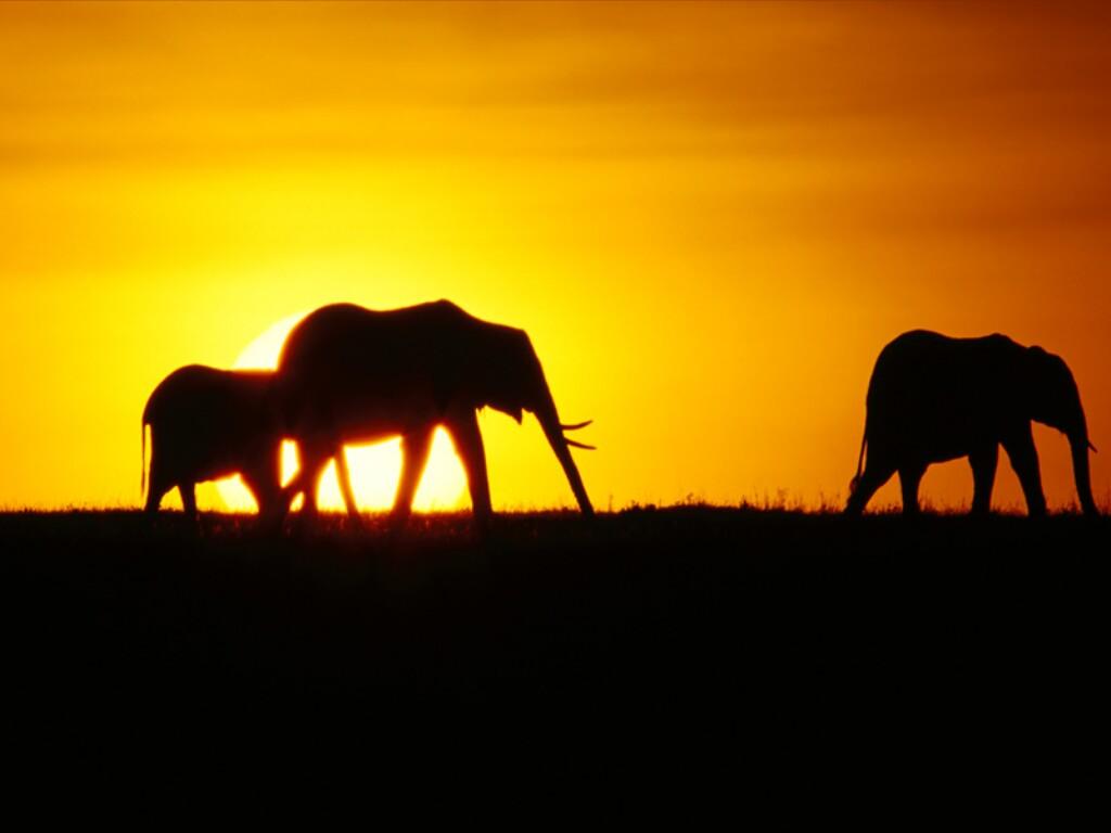 paisajes-africanos-3