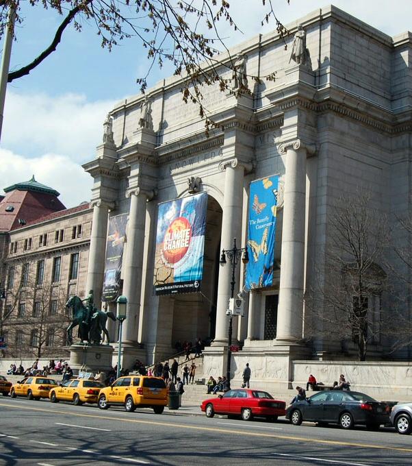 El Museo Americano de Historia Natural4