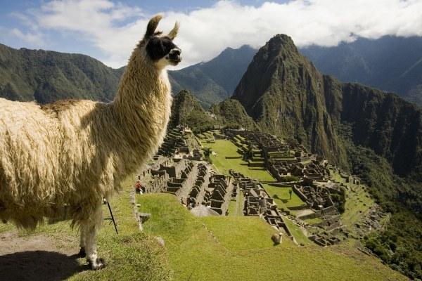 Razones por la cual visitar el Machu Picchu